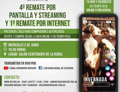 4° Remate por Pantalla y Streaming